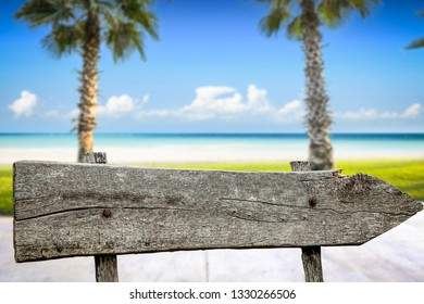 Wooden signpost and sumer time background
