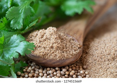 Wooden spoon fule of coriander powder surrounded by cilantro leaves and whole coriander seeds.