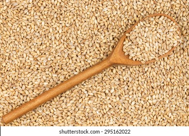 Wooden spoon with pearl barley, lies on pearl barley