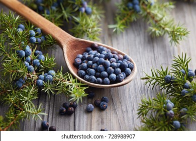 Wooden spoon with seeds of juniper. Juniper branch with berries.