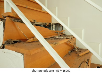 Wooden stairs destroy by termite
