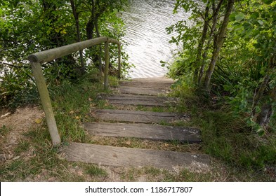 Wooden stairs with railing that end in the river. the vegetation surrounds the stairs.