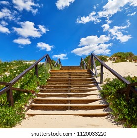 Wooden stairs with railings at the beach buried with sand, leading to blue sky with clouds among purslane flower plants. Summery Landscape.