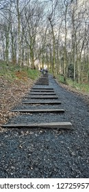 The wooden steps leading up to the ridge at the Yorkshire Sculpture Park, Wakefield, Yorkshire, UK