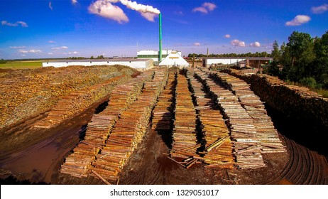 Wooden sticks being stacked on the side of the factory. The pellet factory in Ebavere Estonia