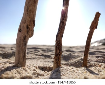Wooden sticks stuck in beach sand.