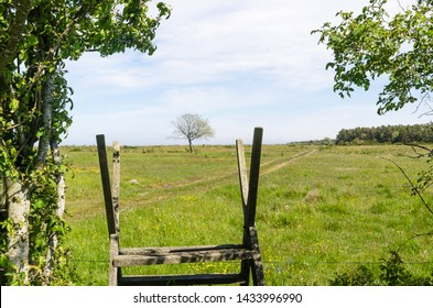 Wooden stile by a green and bright pastureland by spring season at the swedish island Oland