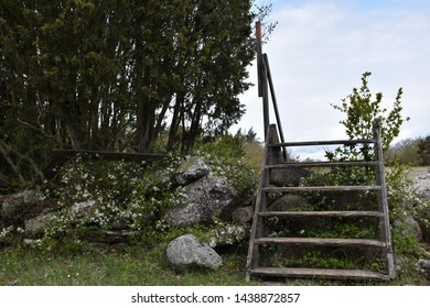 Wooden stile crossing an old traditional dry stone wall at the swedish island Oland
