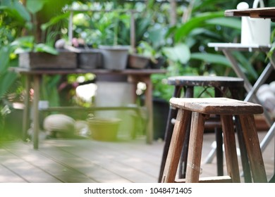 wooden stool in green Garden