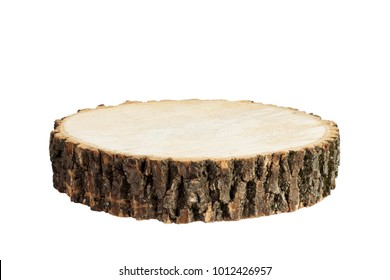 Wooden stump isolated. Cross section of tree trunk, isolated on white background.