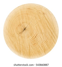 Wooden stump isolated on the white background. Round cut down tree with annual rings as a wood texture.