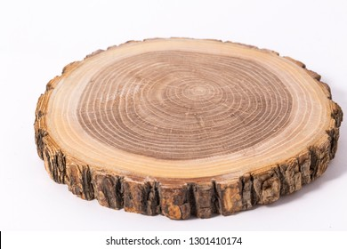 Wooden stump(cut log) isolated. Round cut down tree with annual rings.