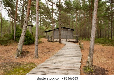 Wooden summer house in the forest