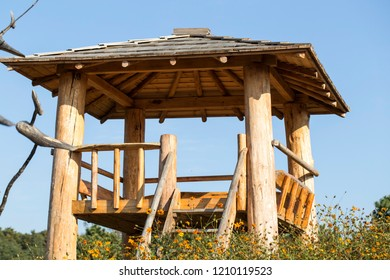 Wooden summerhouse in the park in the summer