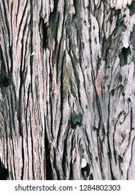 Wooden surface. Close-up.