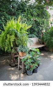 Wooden swing seat in outdoor garden, stock photo