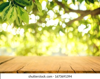 Wooden table and blurred spring background. Spring concept with green nature outdoor.