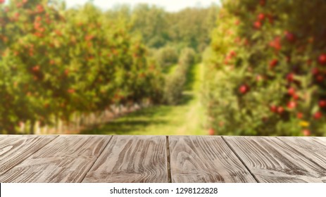 Wooden table and blurred view of beautiful garden on background. Space for text