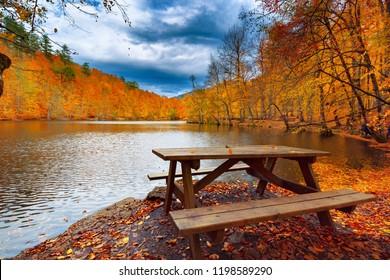 Wooden table by the lake. Wonderful autumn image. Colorful trees. Fallen yellow, red, orange, color leaves on the ground. Yedigoller, Golyazi, Bursa, Bolu, Turkey.