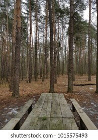 wooden table and chairs in the woods