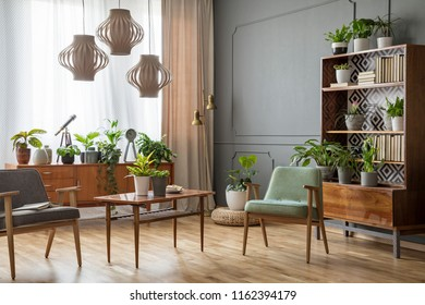 Wooden table with flowers between armchairs in grey flat interior with lamps and plants. Real photo