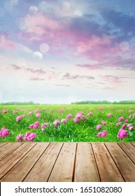 Wooden table with flowers in meadow against summer sky
