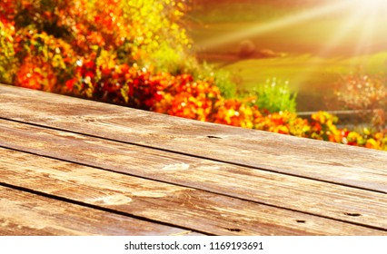 Wooden table in front of colorful autumn leaves in the vineyard