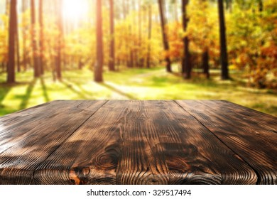 wooden table place and autumn forest of sun