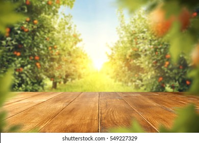 wooden table place of free space for your decoration and orange trees with fruits in sun light