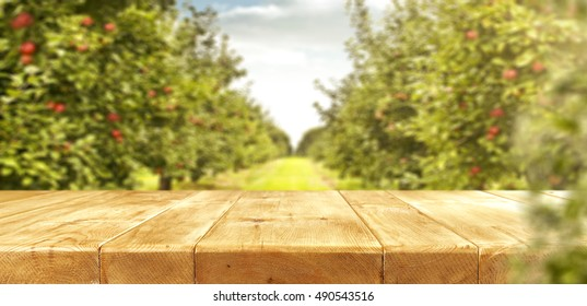 wooden table place and green trees of apples