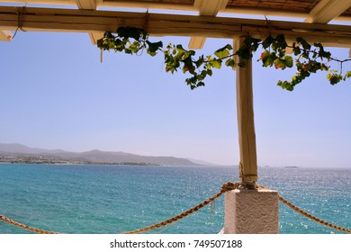 Wooden terrace with ivy bu the sea in Greece