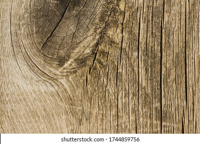 Wooden texture close up photo. White and grey wood background.