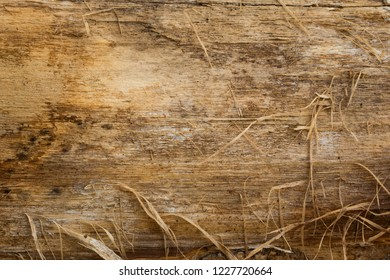 wooden texture with delicate slivers natural patterns background for design