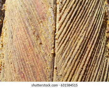 A wooden texture is the extraction of pine resin. Natural pattern
