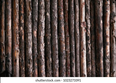 wooden texture, pine logs. Fence