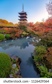 Wooden tower of Toji (Kyoo-Gokoku-ji) Temple with autumn color, Kyoto, Japan. Here is the largest temple pagoda in the country.