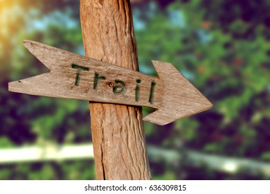 wooden trail sign for hiking in the forest.