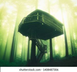 wooden tree house in the forest with dreamy sunshine