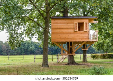 Wooden tree house with window,  stairs and a balcony