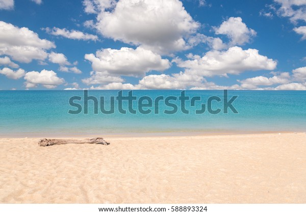 wooden trunk on white beach, clear sea and blue sky