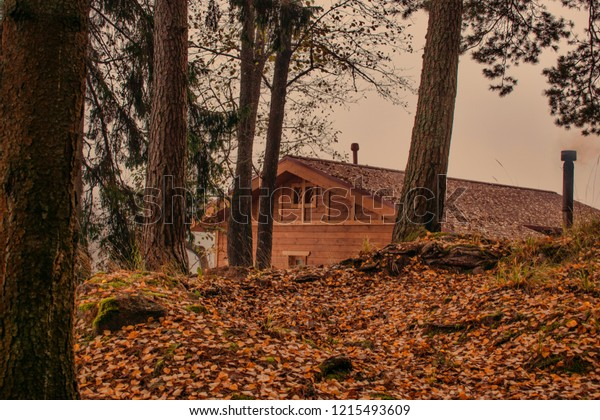 Wooden village house on a hill in the coniferous forest. Swedish landscape. Fall colors around a cottage house