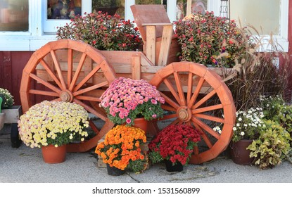 wooden wagon with colorful autumn flowers