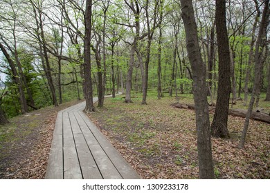 A wooden walk path leads through the woods in spring at Starved Rock State Park in Illinois.
