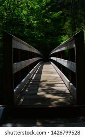 Wooden Walking Bridge in forest