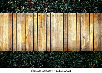 wooden walkway beside small green plant in park from top view