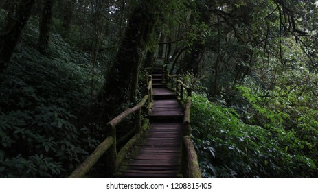 Wooden walkway in Chiang Mai Thailand