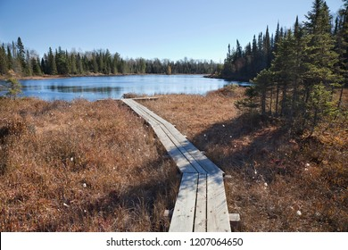 Wooden walkway leading across a bog to a small trout lake in northern Minnesota during autumn