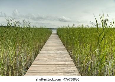 Wooden walkway leading to  lake