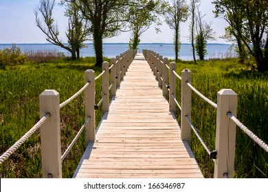 Wooden walkway leading out to the ocean