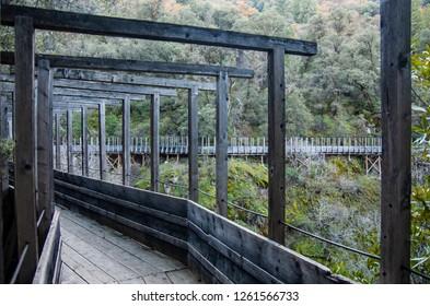 Wooden walkway in Northern California